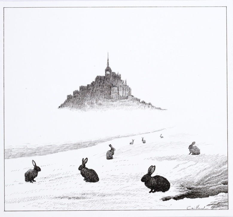 Les-lapins-dans-la-brume